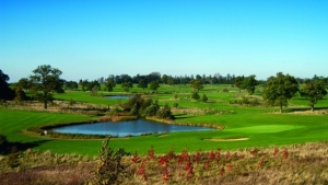 Free round of Golf & Hole-In-One Competition Inclusive for all Golf Linx Live visitors Thumbnail